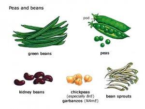 виды бобовых и их польза