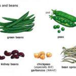 Бобовые в диетическом питании